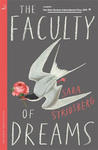 The Faculty of Dreams (Paperback)