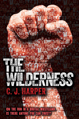The Wilderness (Paperback)