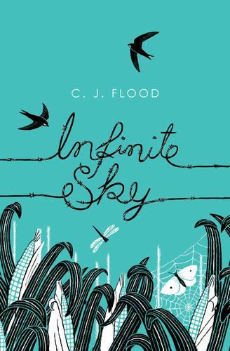 Infinite Sky (Hardback)