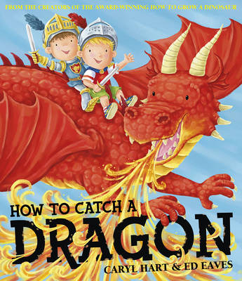 How To Catch a Dragon (Paperback)