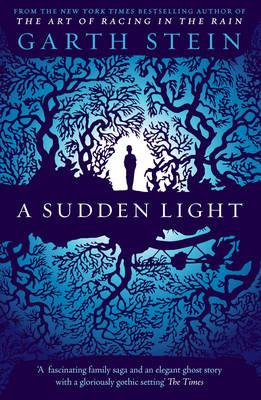 A Sudden Light (Paperback)