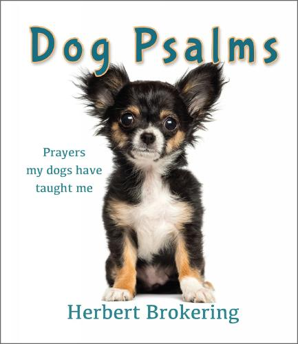 Dog Psalms: Prayers my dogs have taught me (Hardback)