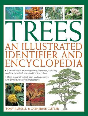 Trees: An Illustrated Identifier and Encyclopedia: A Beautifully Illustrated Guide to 600 Trees, Including Conifers, Broadleaf Trees and Tropical Palms (Paperback)