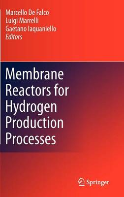 Membrane Reactors for Hydrogen Production Processes (Hardback)