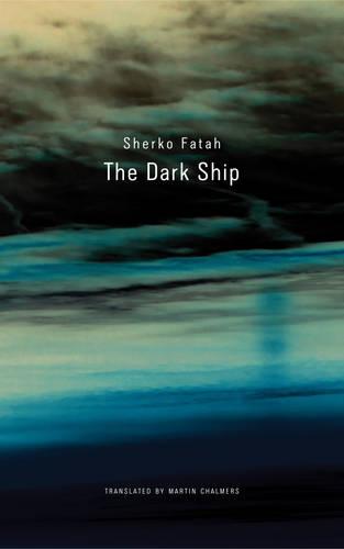 The Dark Ship (Hardback)