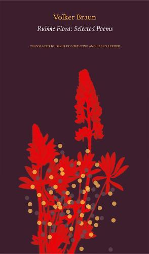 Rubble Flora: Selected Poems (Hardback)