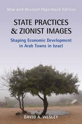 State Practices and Zionist Images: Shaping Economic Development in Arab Towns in Israel (Paperback)