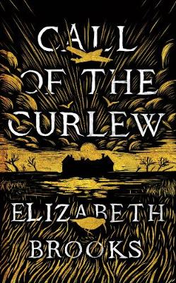 Call of the Curlew (Hardback)