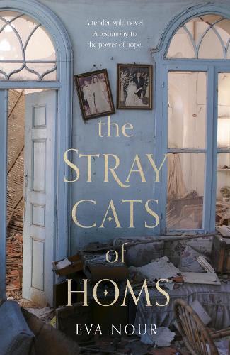 The Stray Cats of Homs (Hardback)