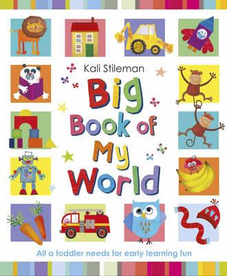 Big Book of My World (Hardback)