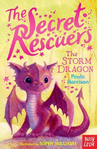 The Secret Rescuers: The Storm Dragon - The Secret Rescuers (Paperback)