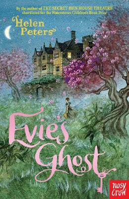 Evie's Ghost (Paperback)