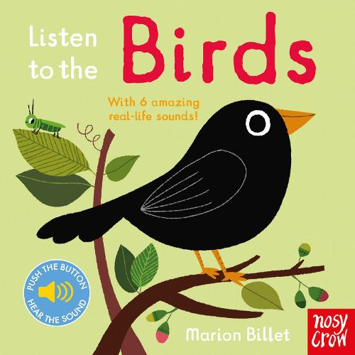 Listen to the Birds - Listen to the... (Board book)