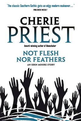 Eden Moore - Not Flesh Nor Feathers (Paperback)