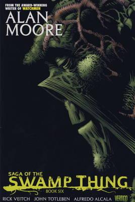 Saga of the Swamp Thing: Bk. 6 (Hardback)