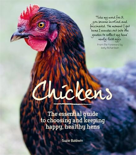 Chickens (Paperback)