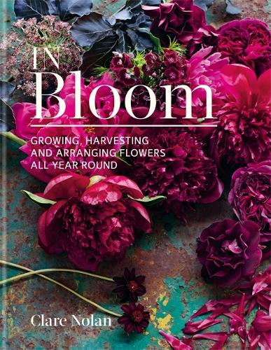 In Bloom: Growing, harvesting and arranging flowers all year round (Hardback)