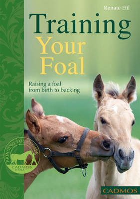 Training Your Foal: Raising a Foal from Birth to Backing (Paperback)