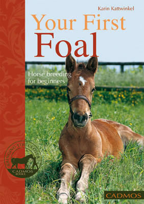 Your First Foal: Horse Breeding for Beginners (Paperback)