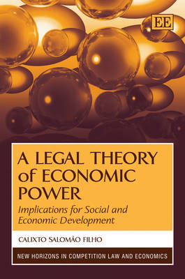 A Legal Theory of Economic Power: Implications for Social and Economic Development - New Horizons in Competition Law and Economics Series (Hardback)
