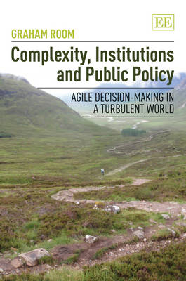 Complexity, Institutions and Public Policy: Agile Decision-Making in a Turbulent World (Hardback)