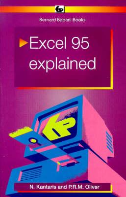 Excel 95 Explained - BP S. 407 (Paperback)