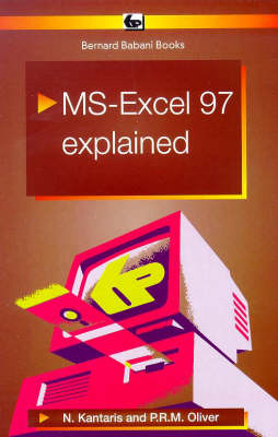 MS Excel 97 Explained - BP S. 429 (Paperback)