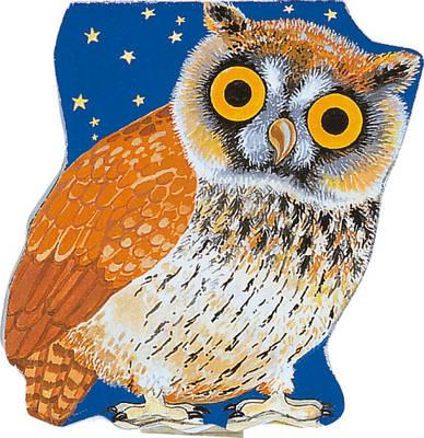 Pocket Owl - Pocket Pals (Board book)