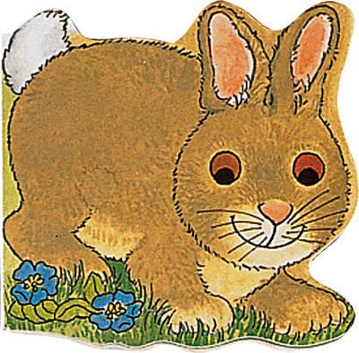 Pocket Bunny - Pocket Pals (Board book)