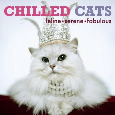 Chilled Cats: Feline, Serene, Fabulous (Hardback)