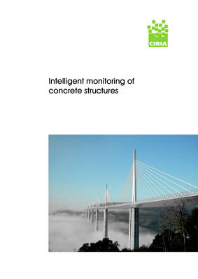 Intelligent Monitoring of Concrete Structures (Paperback)