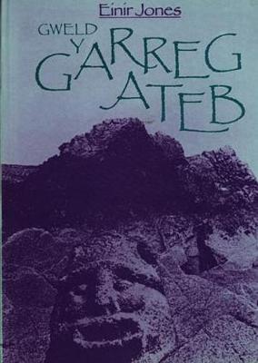 Gweld y Garreg Ateb (Hardback)