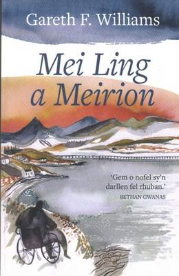 Mei Ling a Meirion (Paperback)