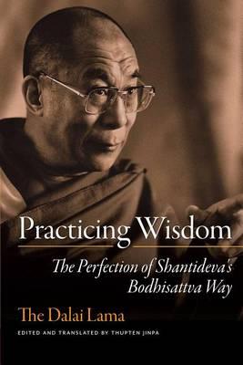 Practicing Wisdom: The Perfection of Shantideva's Bodhisattva Way (Paperback)