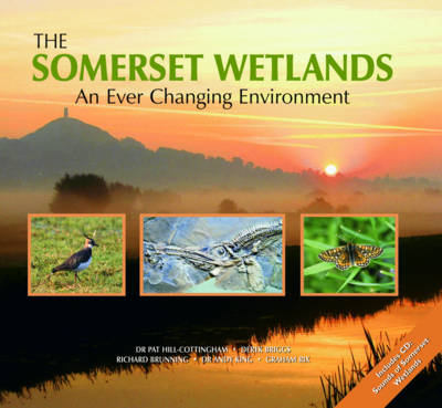 The Somerset Wetlands: An Ever Changing Environment (Hardback)