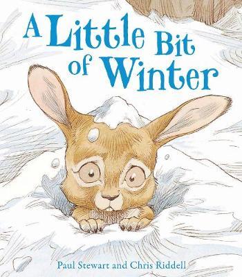 A Little Bit Of Winter - Rabbit and Hedgehog (Paperback)