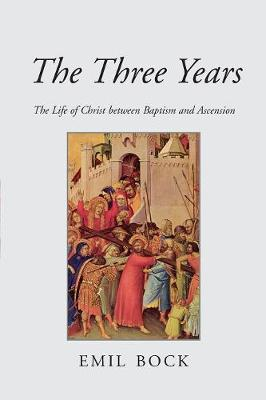 The Three Years: The Life of Christ Between Baptism and Ascension (Paperback)