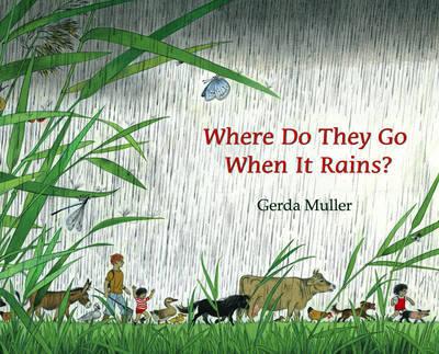 Where Do They Go When It Rains? (Hardback)