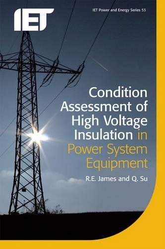 Condition Assessment of High Voltage Insulation in Power System Equipment - Energy Engineering (Paperback)