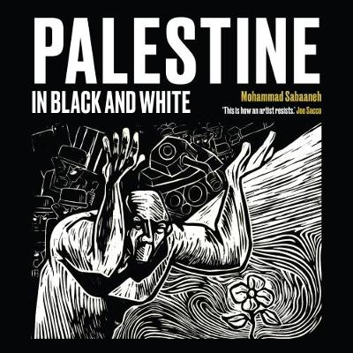 Palestine in Black and White (Paperback)