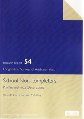 School Non-completers: Profiles and Initial Destinations (Paperback)