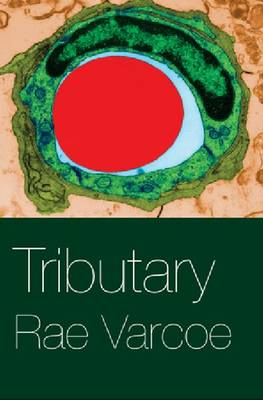 Tributary (Paperback)