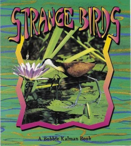 Strange Birds - Birds Up Close S. (Paperback)