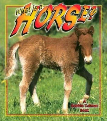 What Is A Horse? - The Science of Living Things (Paperback)