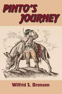 Pinto's Journey (Paperback)