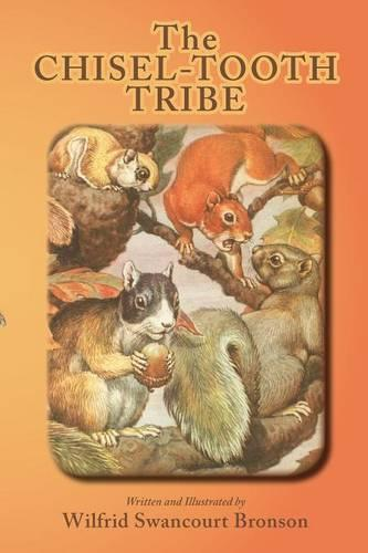 The Chisel-Tooth Tribe (Paperback)
