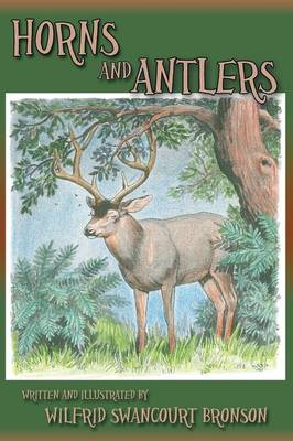 Horns and Antlers (Paperback)