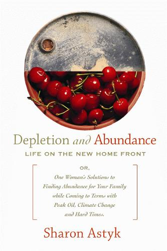 Depletion and Abundance: Life on the New Home Front (Paperback)
