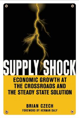 Supply Shock: Economic Growth at the Crossroads and the Steady State Solution (Paperback)