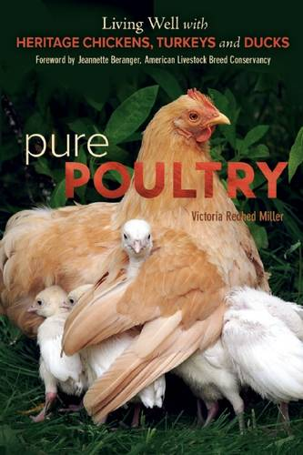 Pure Poultry: Living Well with Heritage Chickens, Turkeys and Ducks (Paperback)